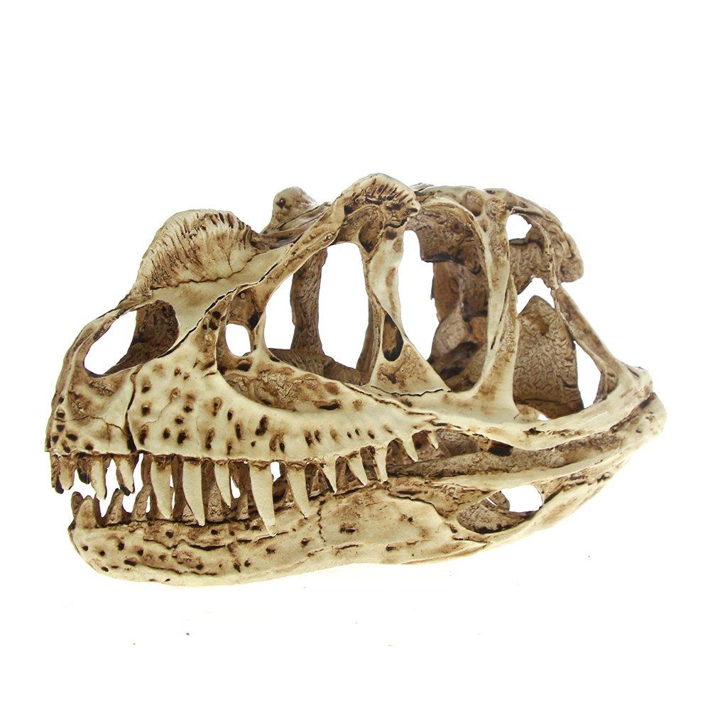 The Geeky Days Fossil Skull Model Collectibles High Precision Ceratosaurus Skull Model Rex Dinosaur Resin Model Figure Aquarium Ornament KL-022