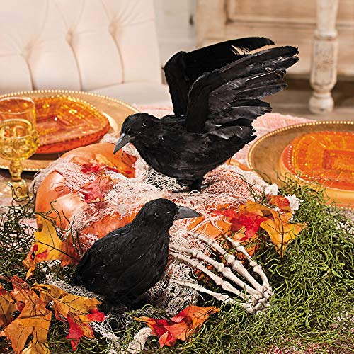Fun Express Realistic Feathered Crows -Set of 2 - Great Halloween Prop Unknown -