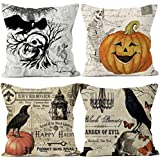 Qinqingo Halloween Pillow Covers Skull Pumpkin Crow Cotton Linen Throw Pillows Decorative Square Cushion Cover 18x18 inches Set of 4 Pillowcase (Crow Set)