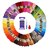 #10: Embroidery Floss 48 Colors 144 Skeins Fuyit Cross Stitch Threads for Friendship Bracelets Floss Crafts Floss with Free Needle Threader Untwist Tool (48 Color)