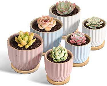 T4U Ceramic Succulent Pot with Tray Different Sizes - Small Succulent Plant Planter Pot Stripes Cactus Holder with Drainage Hole - Gardening Home Desktop Office Windowsill Decoration Gift Set of 6