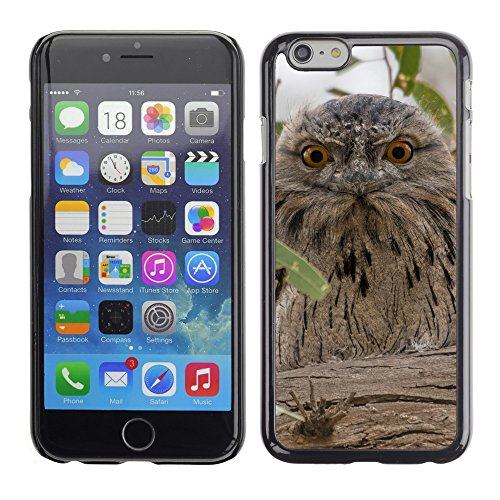 Premio Sottile Slim Cassa Custodia Case Cover Shell // F00009773 owl australian // Apple iPhone 6 6S 6G PLUS 5.5""