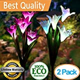 Cheap Solar Garden Stake Lights Outdoor,2 Pack Solar Powered Lights with 8 Lily Flower, Multi-Color Changing LED Solar Landscape Lighting Light For Decorating The Path, Yard, Lawn,Patio (White and Purple)