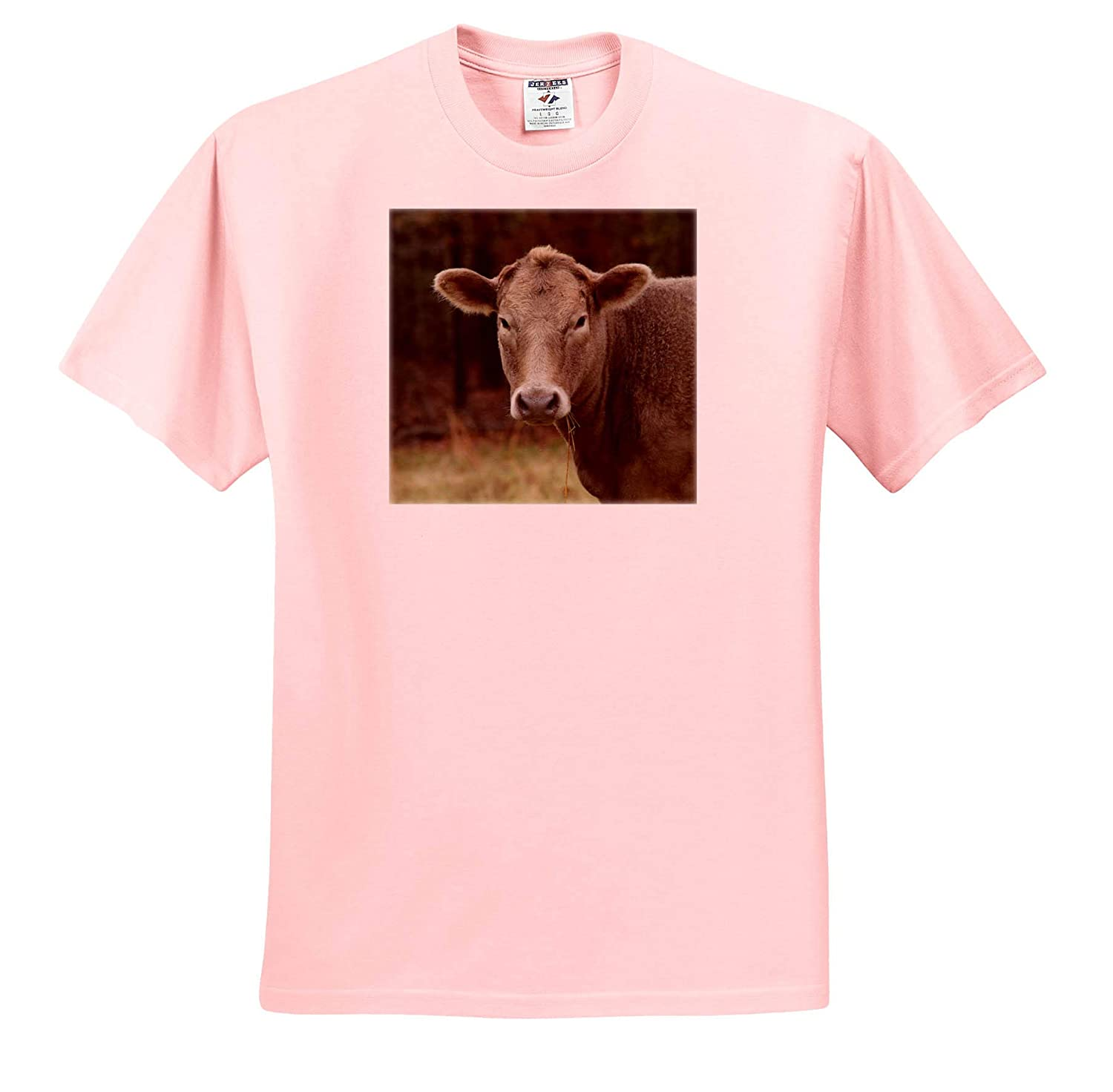 - T-Shirts Animals 3dRose Stamp City Photograph of a Cow on a Local Farm Munching on Some Grass in a Field
