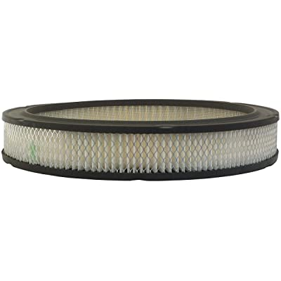 Luber-finer AF861 Heavy Duty Air Filter: Automotive