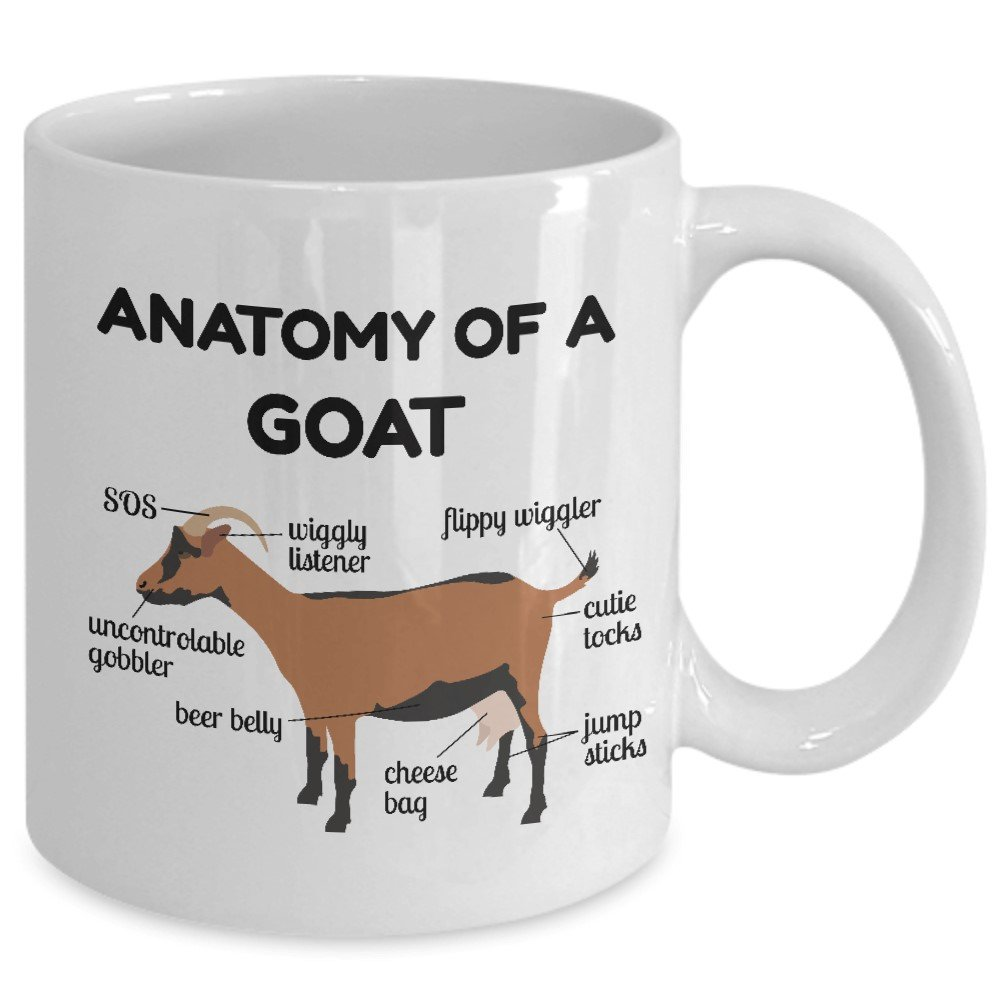 Amazon.com: Goat Anatomy Mug - Goat Owner Gifts - Funny Goats Gifts ...