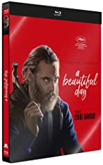 A Beautiful Day BLURAY 1080p FRENCH