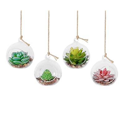TQVAI 4 Pack Hanging Glass Globe Air Planter Terrarium Vase with 39 inch Sling (Not Included The Plants): Garden & Outdoor