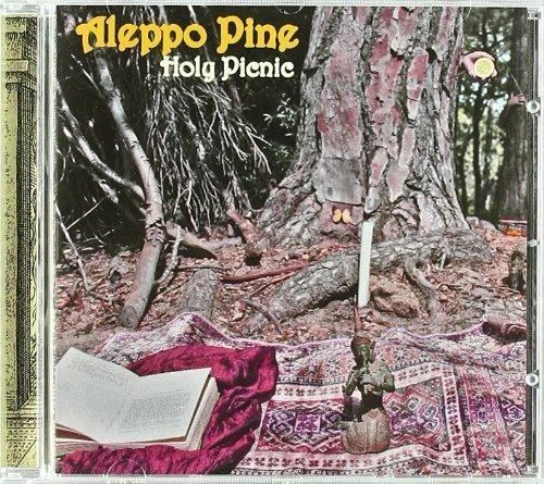 Holy Picnic by Aleppo Pine (2010-09-14?