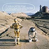 144-piece jigsaw puzzle STAR WARS R2-D2 & C-3PO puzzle + panel set