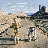 144 piece jigsaw puzzle + panel set STAR WARS R2-D2 & C-3PO