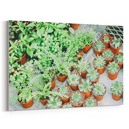 Red Flower Prayer Bowl (Westlake Art - Plants Potted - 24x36 Canvas Print Wall Art - Canvas Stretched Gallery Wrap Modern Picture Photography Artwork - Ready to Hang 24x36 Inch)