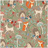 Jillson Roberts 6-Roll Count Baby Shower Gift Wrap Available in 5 Different Designs, Krafty Fox