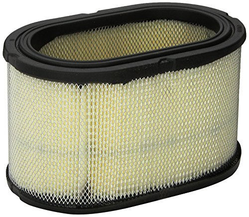 Cummins Onan 140-2897 Air Filter