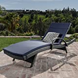 Christopher Knight Home 551 Salem Chaise Outdoor Lounge (Set of 2)