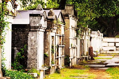 Tombs and Mausoleums in Old Cemetery New Orleans Photo Photograph Cool Wall Decor Art Print Poster 36x24