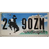 USA Nummernschild WYOMING ~ US Kennzeichen Motiv Cowboy Rodeo Devils Tower ~ Blechschild
