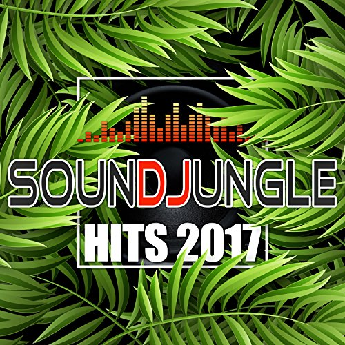 Soundjungle: Hits 2017
