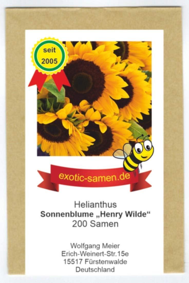 Sunflower Autumn Beauty 5+ Samen- Rarität Sonnenblume
