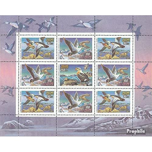 russie 320-322 Feuille miniature (complète.Edition.) 1993 canards (Timbres pour les collectionneurs)