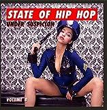 State of Hip Hop: Under Suspicion, Vol. 8