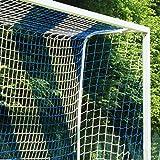 Donet Fußballtornetz 7,5 x 2,5 m Tiefe oben 0,80/unten 2,00 m, zweifarbig, PP 4 mm ø, blau/weiß