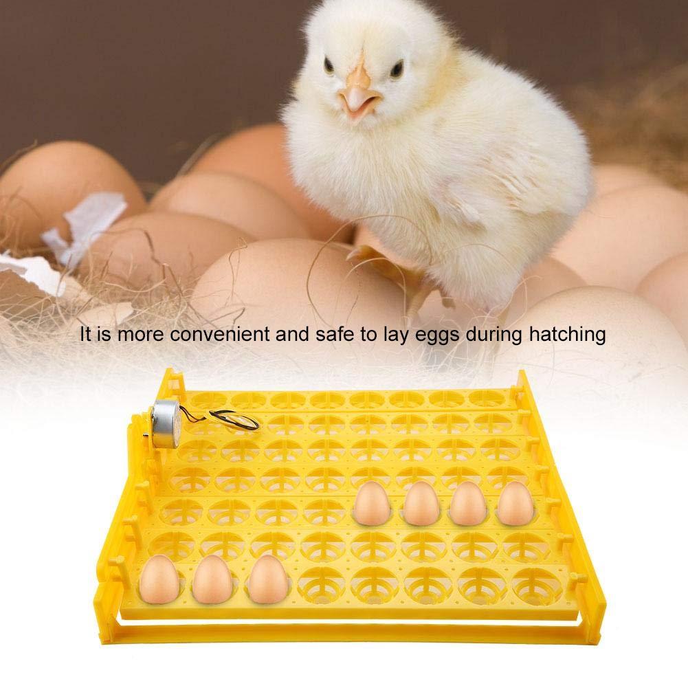 220V Motor 56 Eggs Mini Incubator Hatcher Automatic Egg Turning Tray Tools with Motor