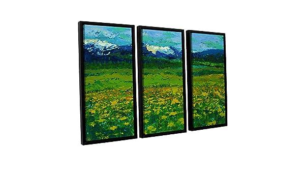 ArtWall 0gra019c3654f 3 Piece Daniel Grays Mountain Meadow Gallery Wrapped Floater Framed Canvas Set 36 x 54