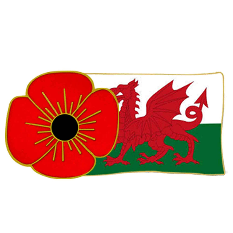 The Royal British Legion Manchester United Poppy Lapel Pin Amazon
