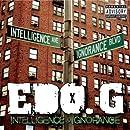 Intelligence & Ignorance