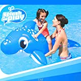 H2OGO! Inflatable Dolphin Ride On