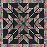 Easy Quilt Kit Exploding Star Floral 3D/Queen