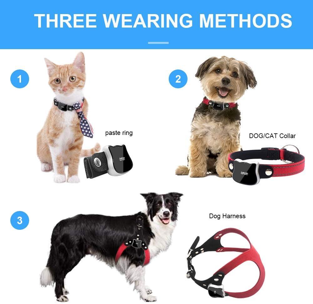 Amazon.com: BARTUN - Rastreador GPS para mascotas, monitor ...