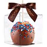 Thalia 30 Pcs Candy Apple Box with Hole Top, PET Clear Box, Transparent Boxes, Clear Gift Boxes for Caramel Apples…