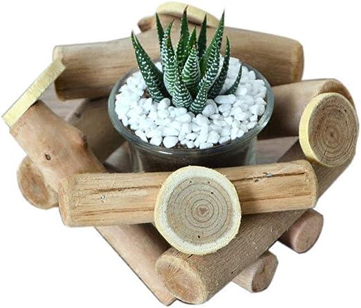 XHZJ Huang Li plantas suculentas macetas de madera de material a ...