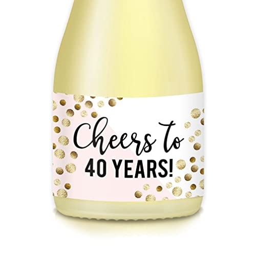 Womans 40th Birthday Gift Idea Mini Wine Or Champagne Bottle Labels CHEERS To 40 Years Celebrating Fortieth 20 Count Sparkling Stickers For Party