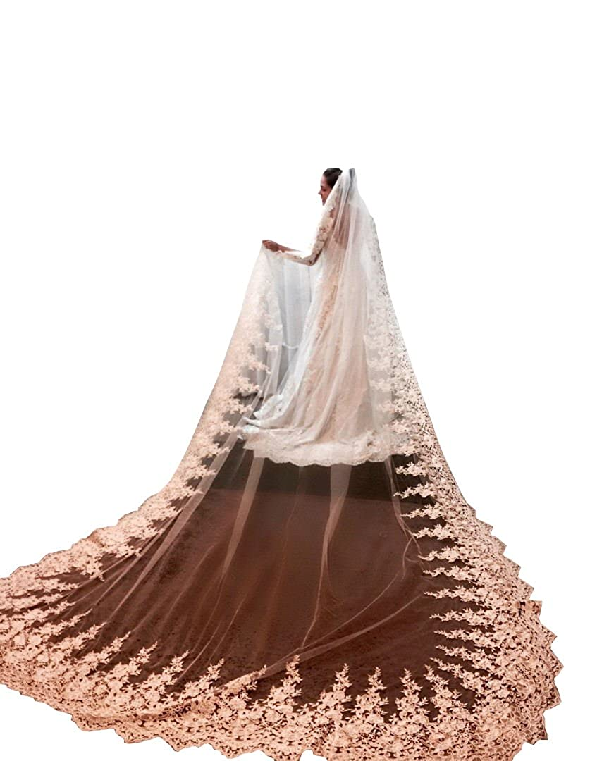 Banfvting Appliques Lace Luxury Long Wedding Bridal Veils 4M One Tier