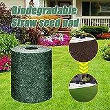 Biodegradable Grass Seed Mat Roll