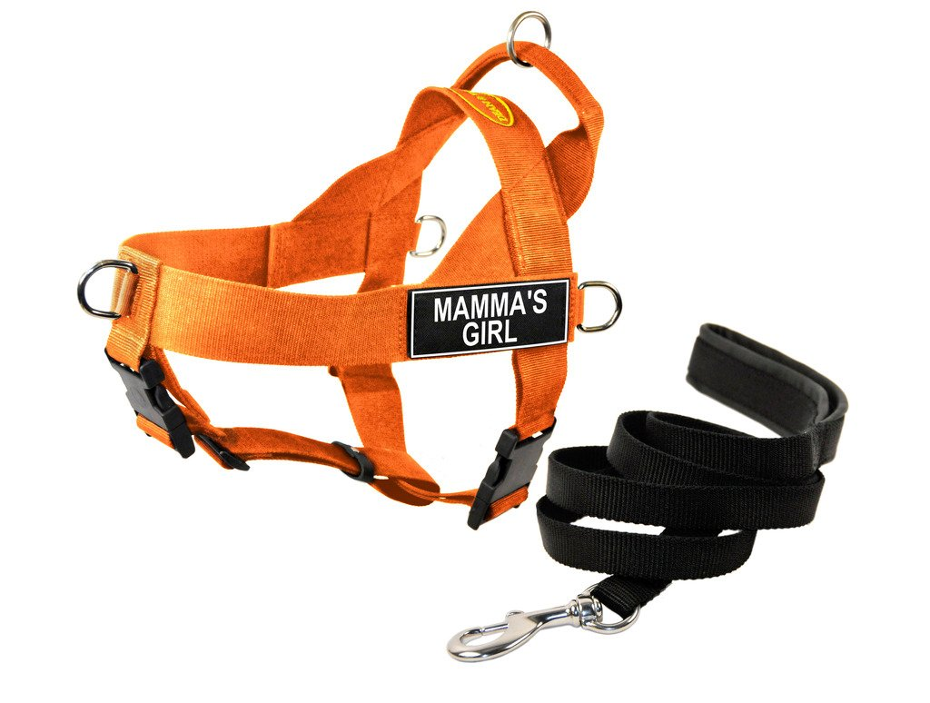 Dean & Tyler DT Universal No Pull Dog Harness with Mamma's Girl  Patches and Puppy Leash, orange, Small
