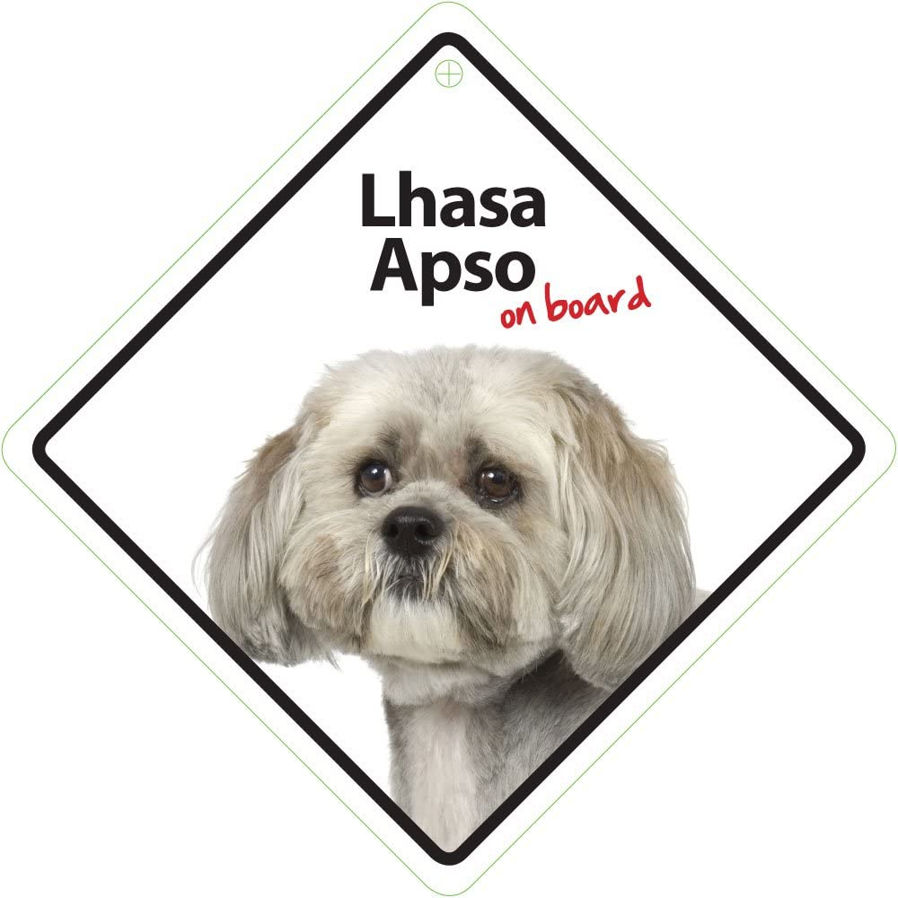 Magnet /& Steel Lhasa Apso On Board