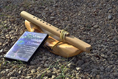Windpony key of G 6-hole Unfinished Poplar Native American Style Flute with DVD