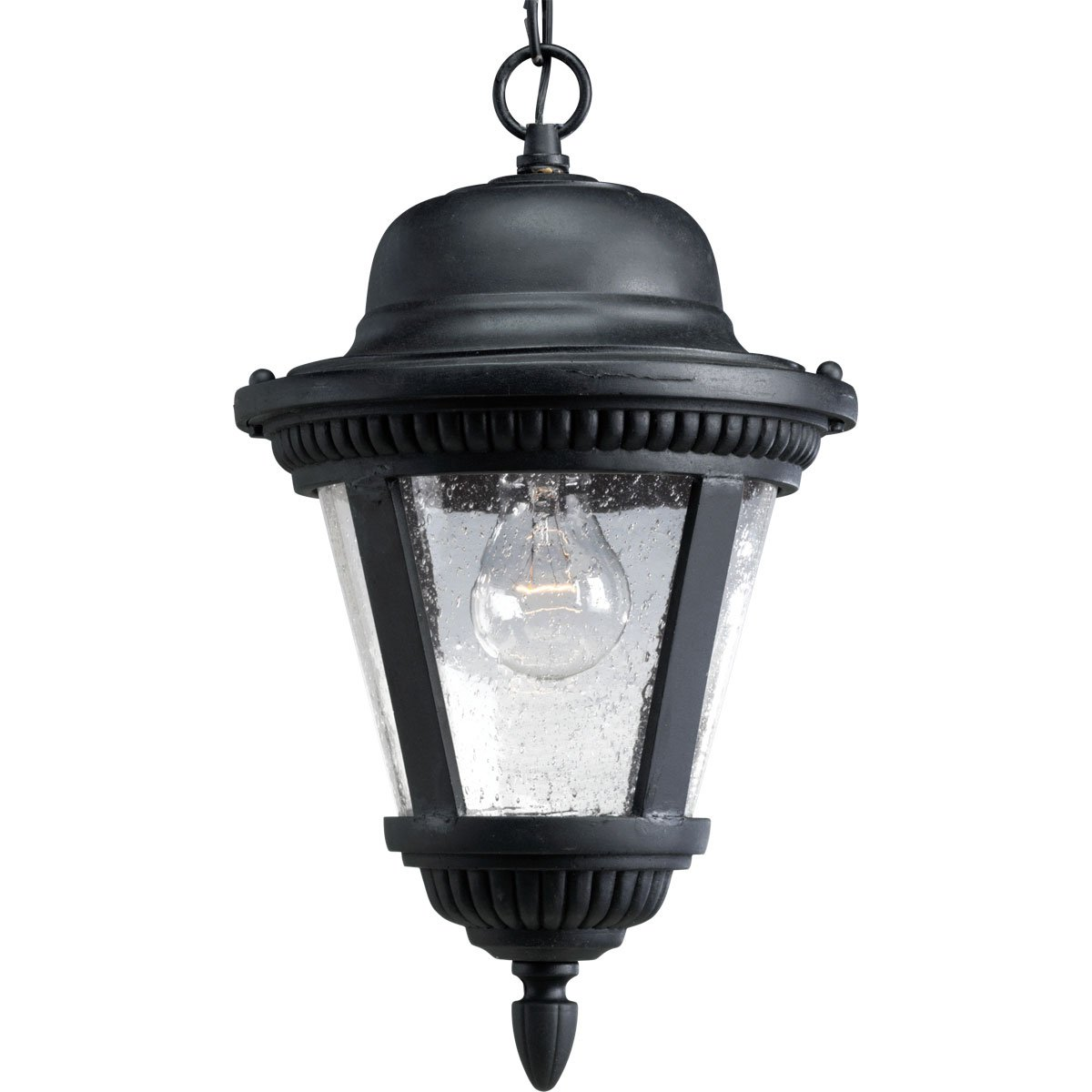 Progress Lighting P5530-31 1-Light Cast Hanging Lantern with Clear Seeded Glass, Textured Black