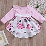 c7ba74a6d Galleon - HappyMA Infant Toddler Baby Girl Clothing Floral Dress ...