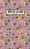2019-2020 Pocket Planner: Nifty Golden Llama Tribal