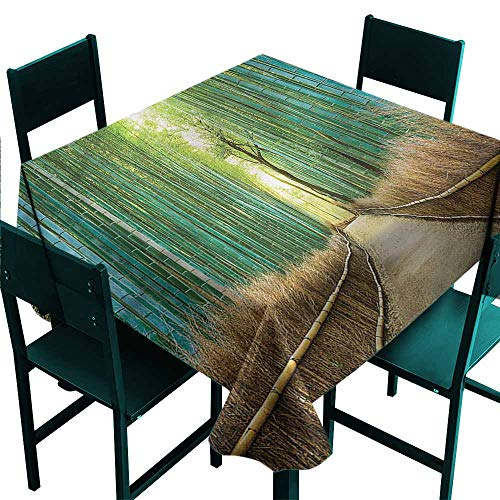 DONEECKL Square Tablecloth Bamboo Forest Nature Park in Japan Party W70 xL70