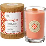 Root Candles Scented Soy Candle in Energize (Rosemary Eucalyptus) 6.5 oz