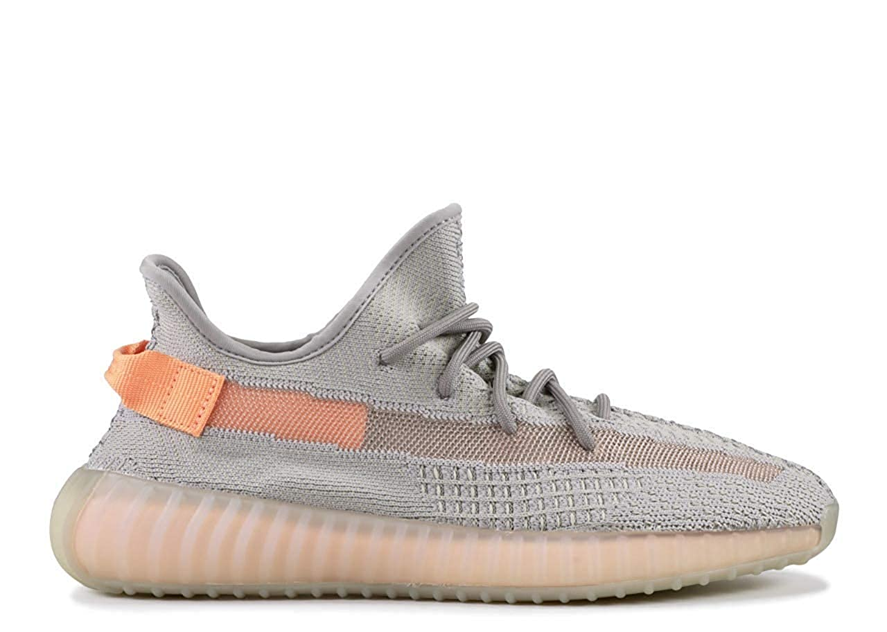 Buy YEEZY Boost 350 V2 True Form Shoes