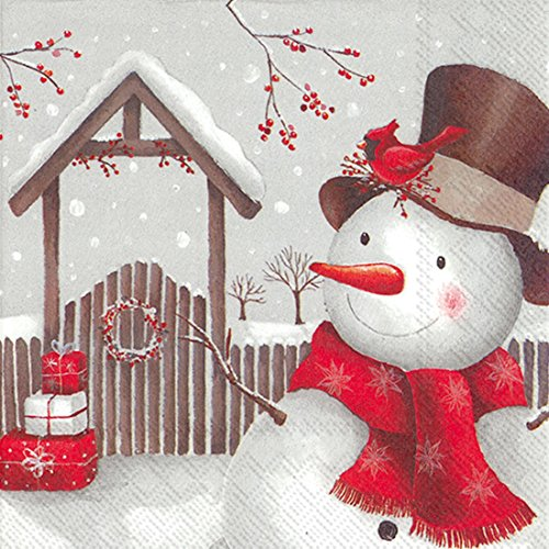 Ideal Home Range 20-Count Smiling Snowman Paper Cocktail Napkins, -
