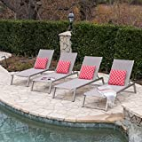 Santa Monica Outdoor Grey Mesh Chaise Lounge with Grey Finished Aluminum Frame (Set of 4) For Sale