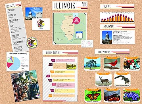 (Eureka Capstone Illinois State Bulletin Board for Teachers Classroom Decorations Set, 5pc, 17'' W x 24'' H)